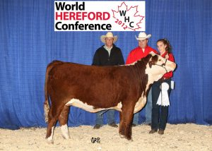 World Hereford Conference 2012